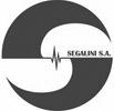 Segalini